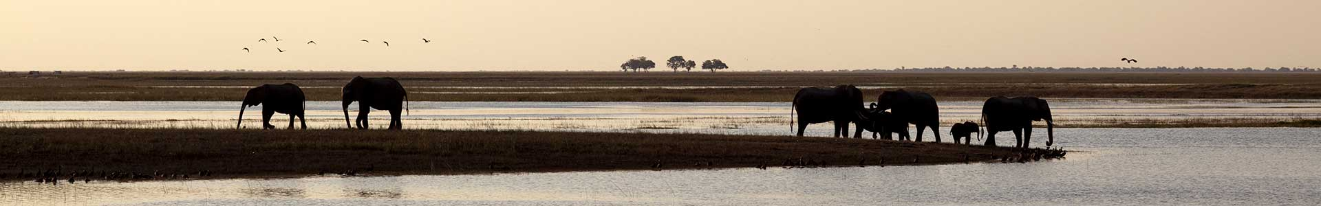 Voyage au Botswana - TUI