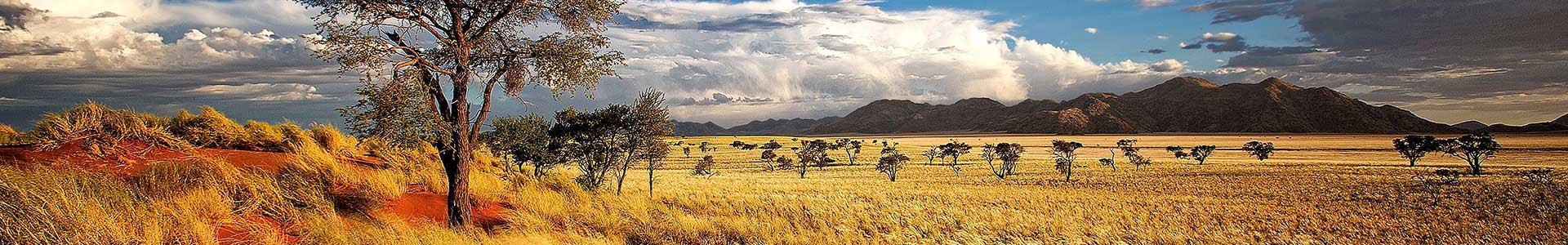 Voyage en Namibie - TUI