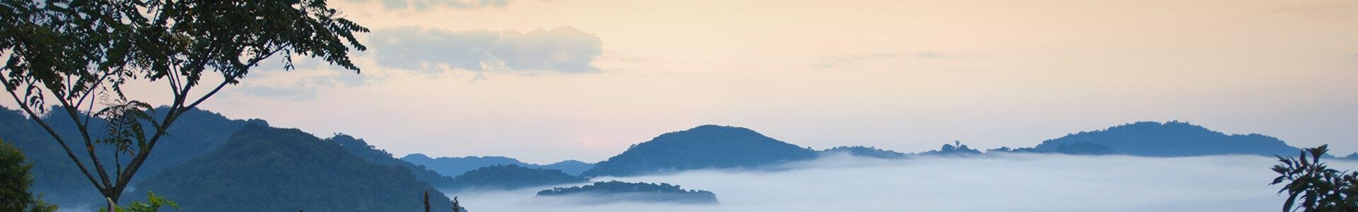 Voyage au Rwanda - TUI
