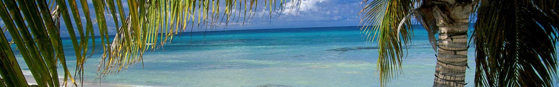 Voyage à Aruba - TUI