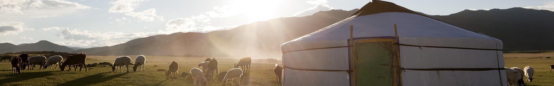 Voyage en Mongolie - TUI