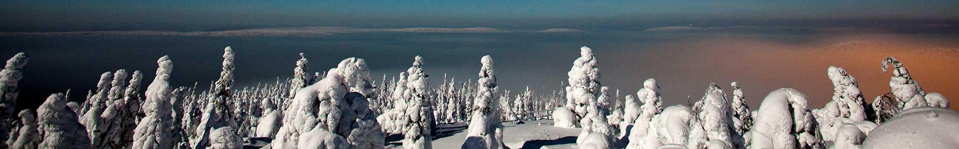 Voyage Laponie - TUI