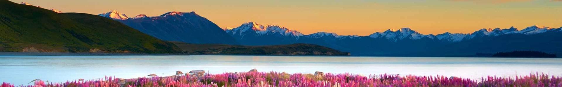 Voyage en Nouvelle-Zélande - TUI