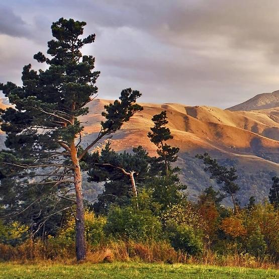Voyage en Armenie - TUI